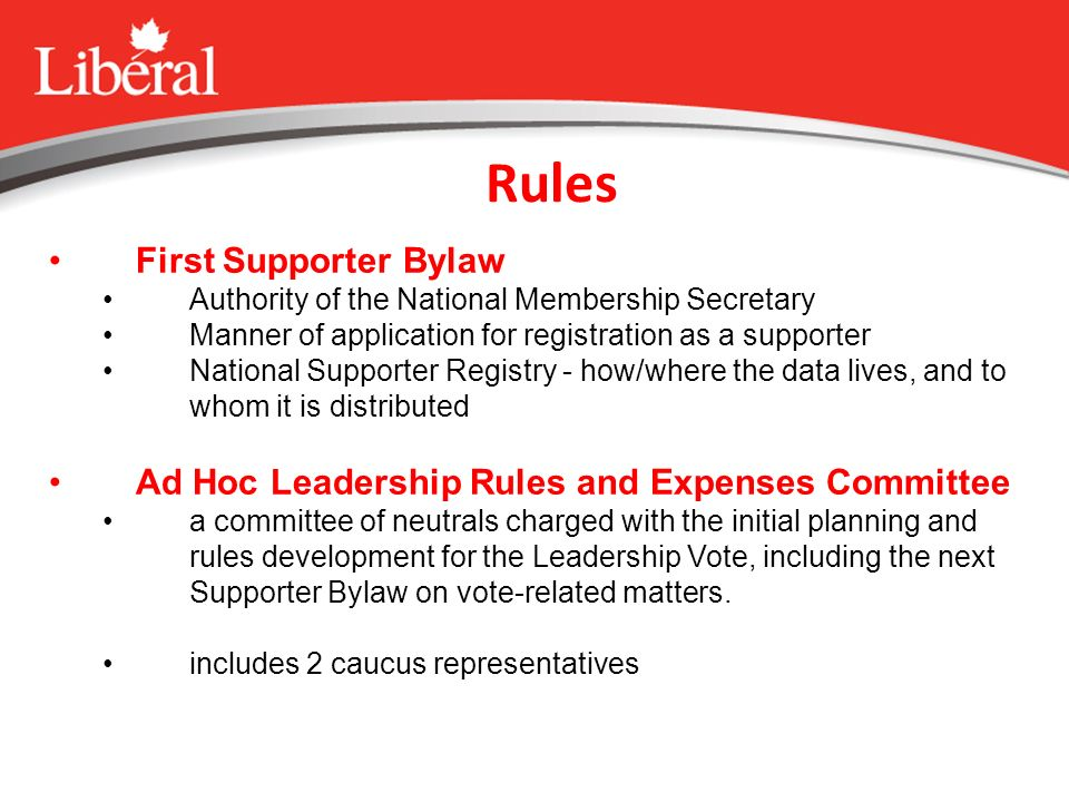 Rules First Supporter Bylaw Authority of the National Membership Secretary Manner of application for registration as a supporter National Supporter Registry - how/where the data lives, and to whom it is distributed Ad Hoc Leadership Rules and Expenses Committee a committee of neutrals charged with the initial planning and rules development for the Leadership Vote, including the next Supporter Bylaw on vote-related matters.