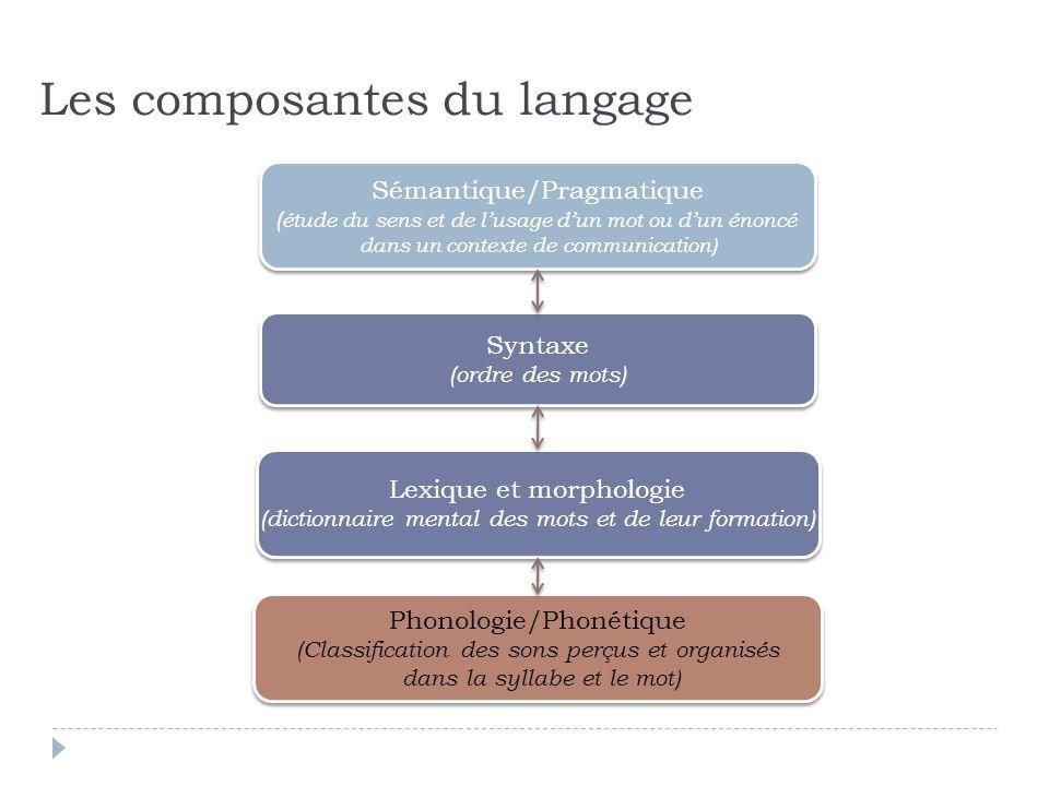 Sémantique/Pragmatique ( étude du sens et de lusage dun mot ou dun énoncé dans un contexte de communication) Sémantique/Pragmatique ( étude du sens et
