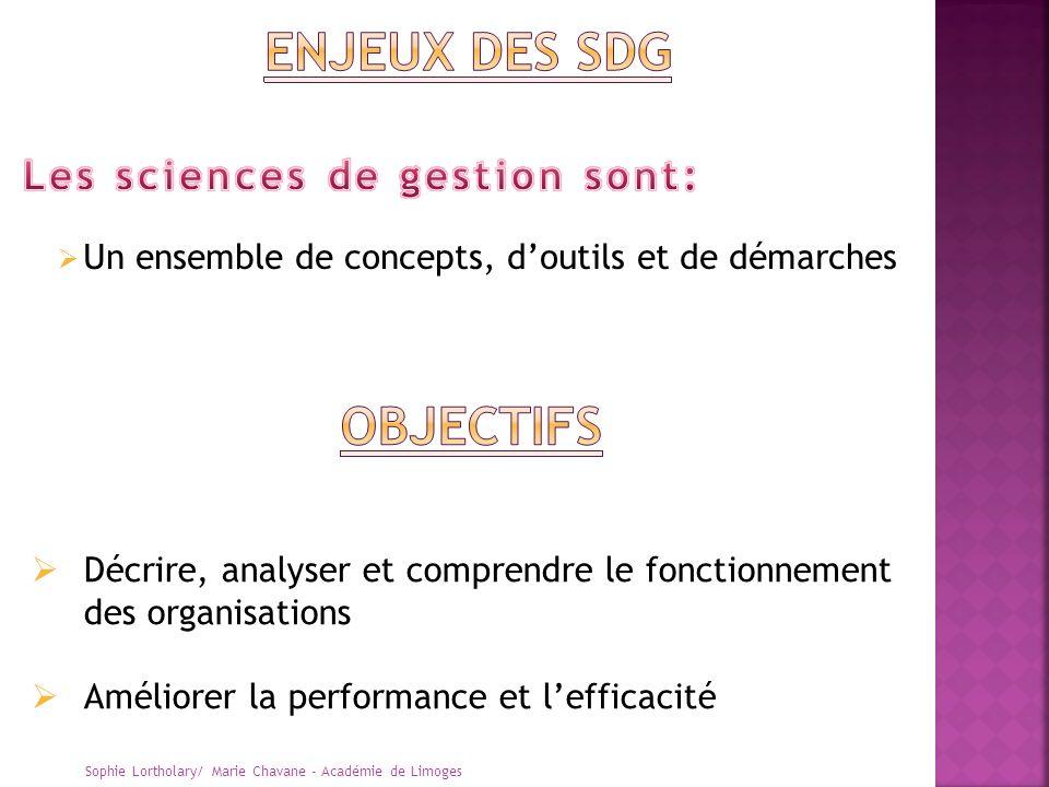 Un ensemble de concepts, doutils et de démarches Sophie Lortholary/ Marie Chavane - Académie de Limoges Décrire, analyser et comprendre le fonctionnem