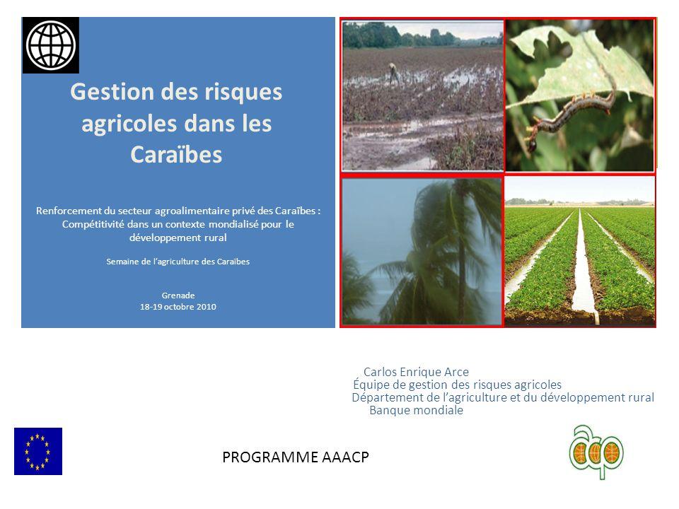 + Carlos Enrique Arce Équipe de gestion des risques agricoles Département de lagriculture et du développement rural Banque mondiale Renforcement du se