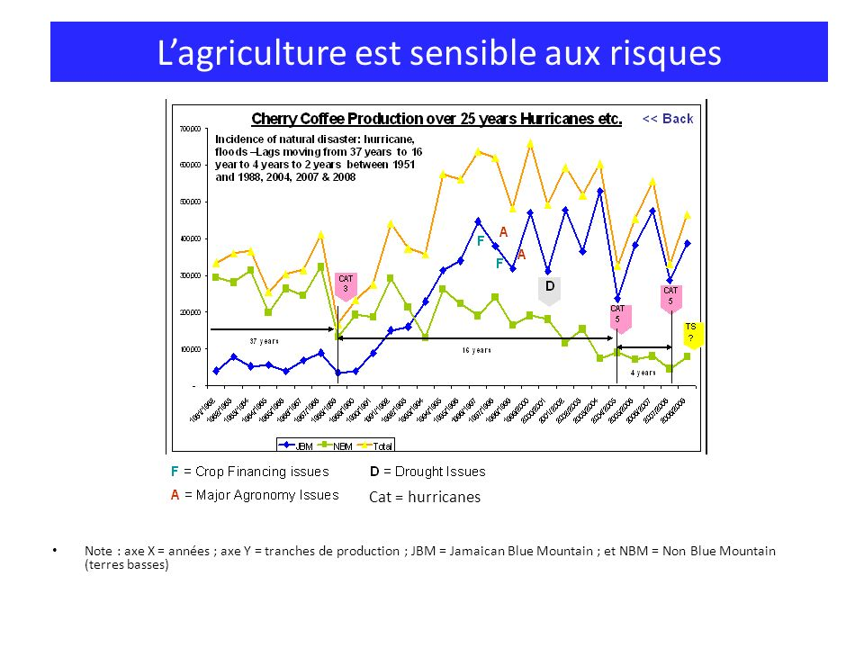 Lagriculture est sensible aux risques Note : axe X = années ; axe Y = tranches de production ; JBM = Jamaican Blue Mountain ; et NBM = Non Blue Mountain (terres basses) Cat = hurricanes
