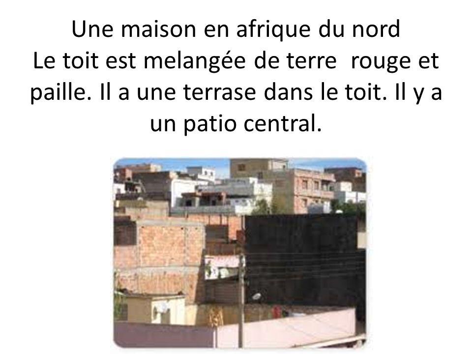 Une maison en afrique du nord Le toit est melangée de terre rouge et paille. Il a une terrase dans le toit. Il y a un patio central.