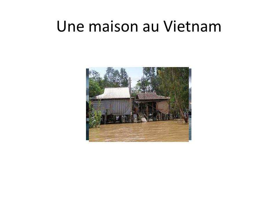 En Polynésie française Des bungalows, construits sur pilotis ou sur le sol, souvent en bambou avec des toits des lacs, des rivieres ou simplement au-dessus du sol.
