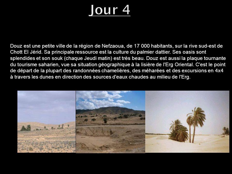 Douz est une petite ville de la région de Nefzaoua, de 17 000 habitants, sur la rive sud-est de Chott El Jérid. Sa principale ressource est la culture