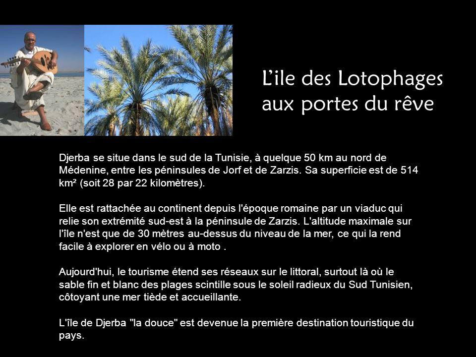Djerba se situe dans le sud de la Tunisie, à quelque 50 km au nord de Médenine, entre les péninsules de Jorf et de Zarzis. Sa superficie est de 514 km