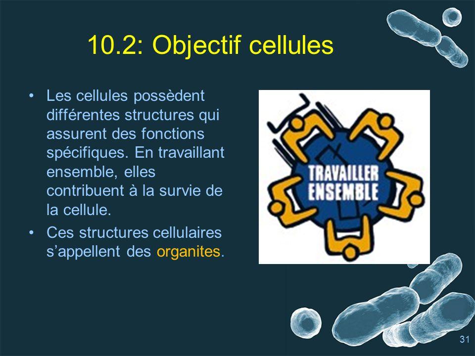 10.2: Objectif cellules Les cellules possèdent différentes structures qui assurent des fonctions spécifiques.
