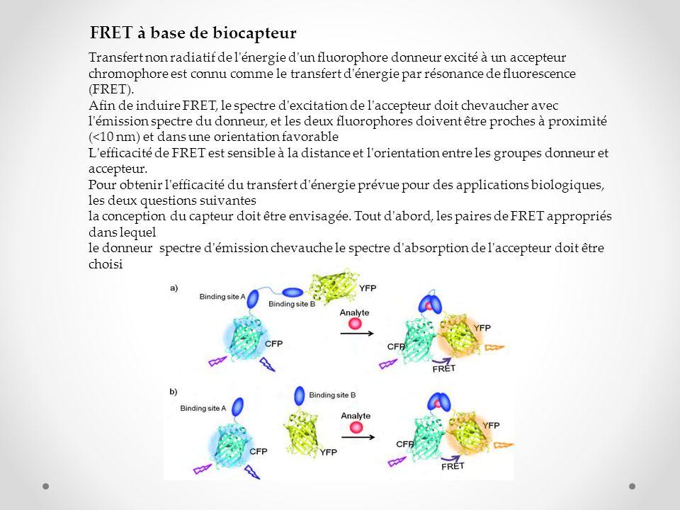 FRET à base de biocapteur Transfert non radiatif de l'énergie d'un fluorophore donneur excité à un accepteur chromophore est connu comme le transfert