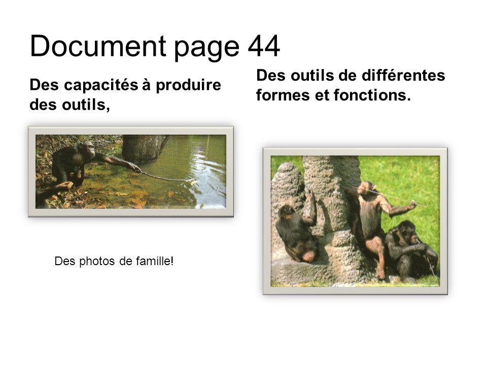 Document page 44 Des capacités à produire des outils, Des outils de différentes formes et fonctions. Des photos de famille!