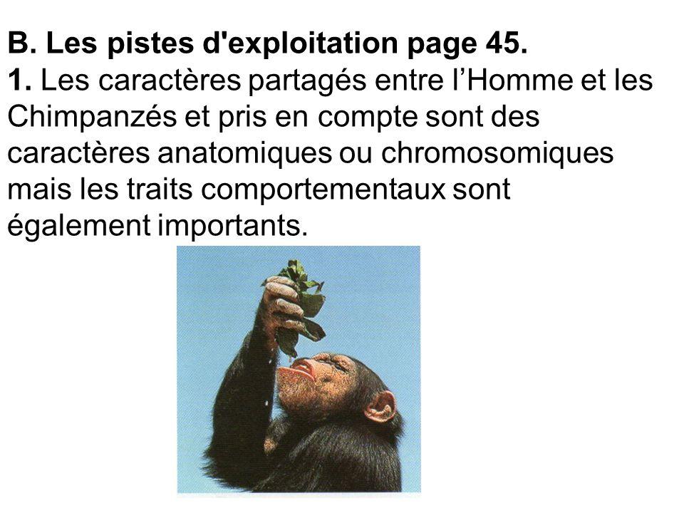B. Les pistes d'exploitation page 45. 1. Les caractères partagés entre lHomme et les Chimpanzés et pris en compte sont des caractères anatomiques ou c