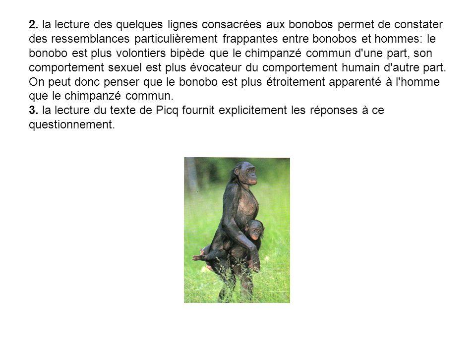 2. la lecture des quelques lignes consacrées aux bonobos permet de constater des ressemblances particulièrement frappantes entre bonobos et hommes: le