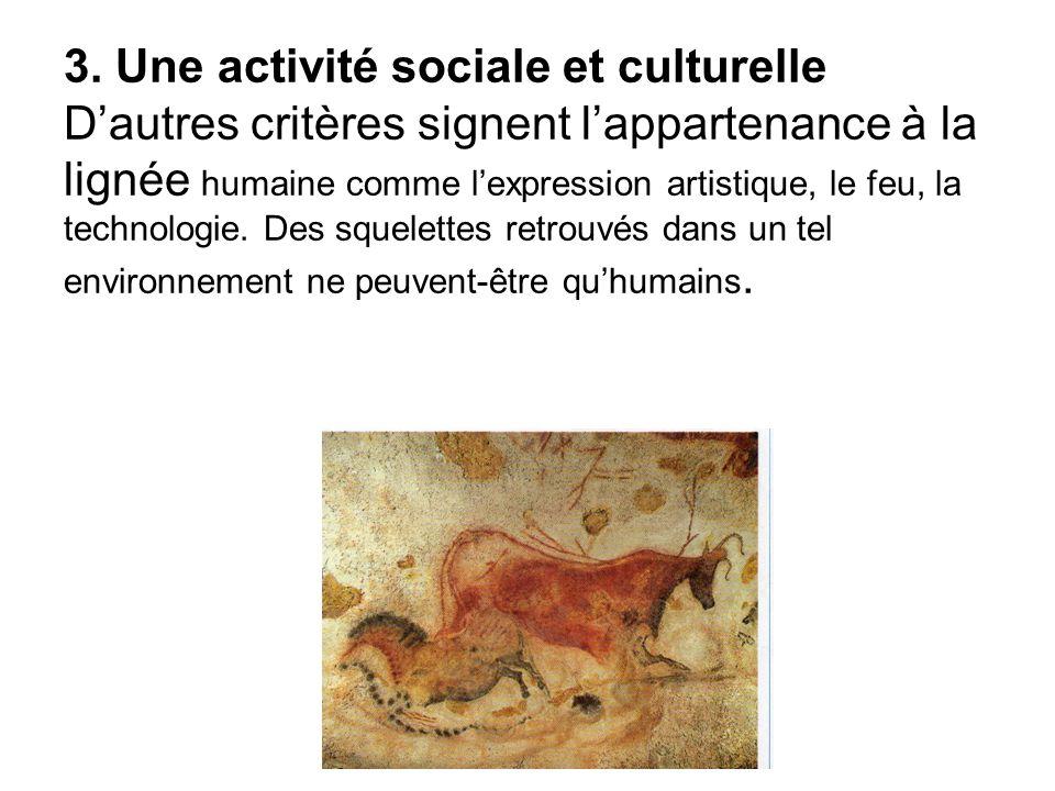 3. Une activité sociale et culturelle Dautres critères signent lappartenance à la lignée humaine comme lexpression artistique, le feu, la technologie.
