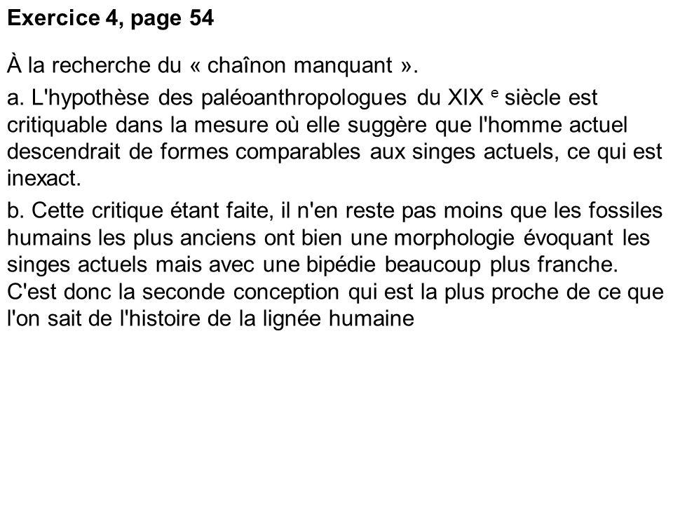 Exercice 4, page 54 À la recherche du « chaînon manquant ». a. L'hypothèse des paléoanthropologues du XIX e siècle est critiquable dans la mesure où e