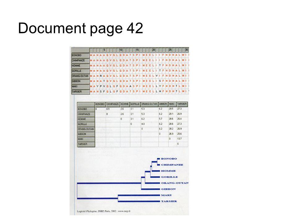 B Les critères d appartenance à la lignée humaine, 1. Une bipédie exclusive Document A1 page 46