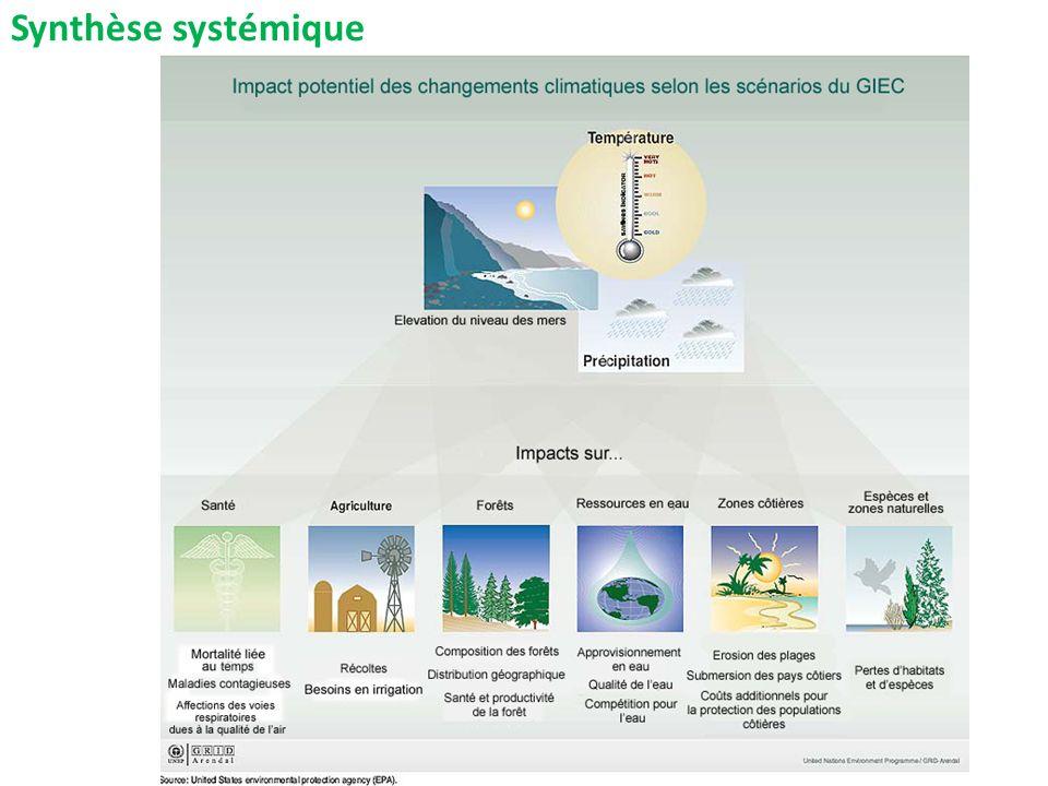 Synthèse systémique