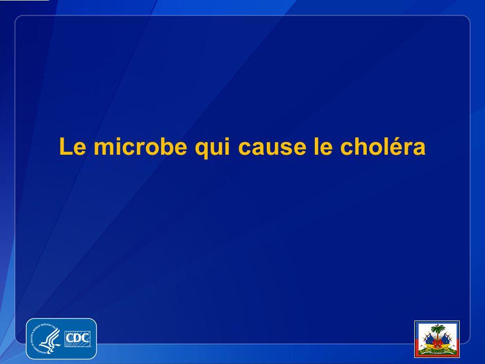 Vibrio cholerae O1