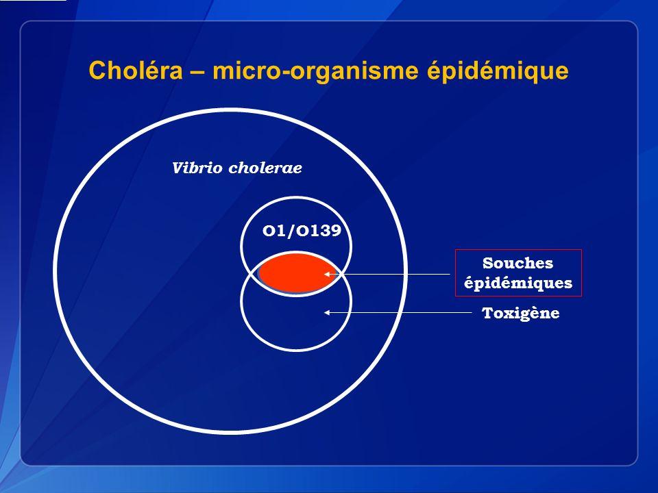 Choléra – micro-organisme épidémique Souches épidémiques Toxigène O1/O139 Vibrio cholerae