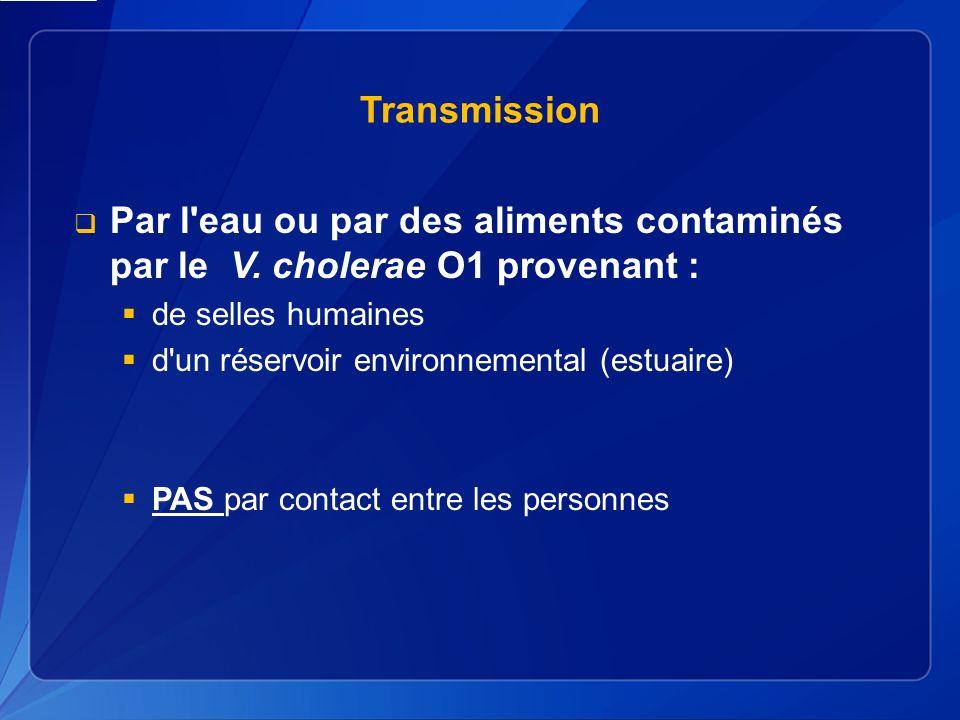 Transmission Par l eau ou par des aliments contaminés par le V.