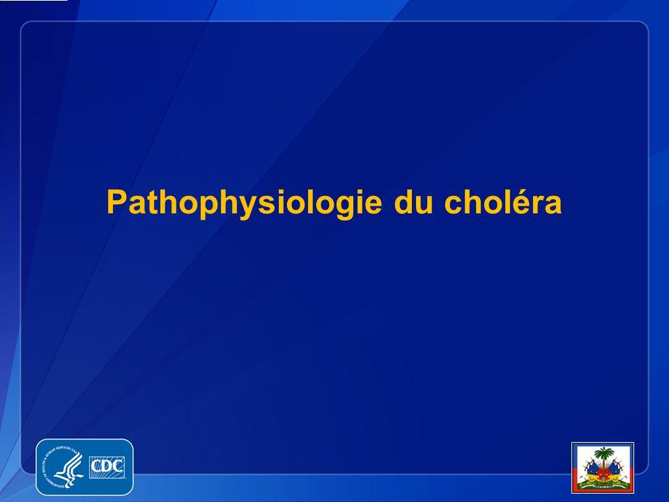 Pathophysiologie du choléra
