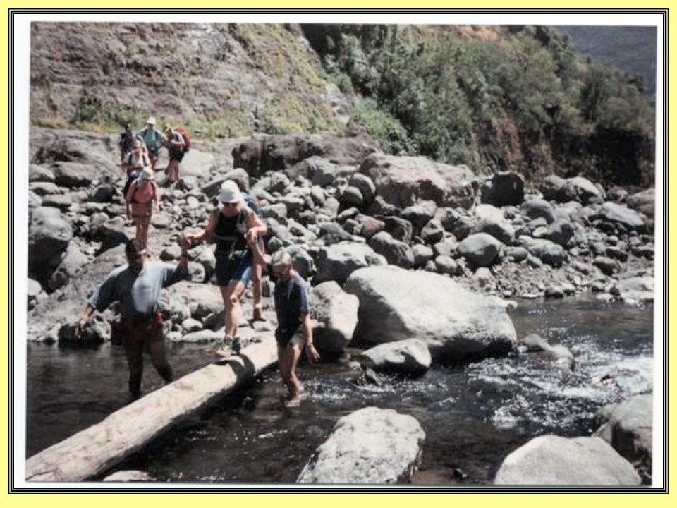 Un bain très apprécié dans la rivière des Galets.
