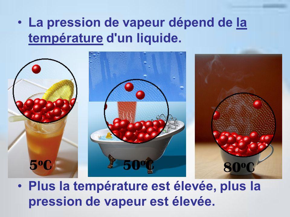 La pression de vapeur dépend de la température d'un liquide. Plus la température est élevée, plus la pression de vapeur est élevée. 5oC5oC50 o C 80 o