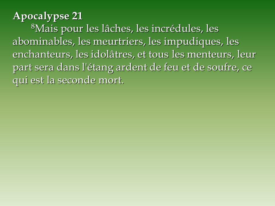 Apocalypse 21 8 Mais pour les lâches, les incrédules, les abominables, les meurtriers, les impudiques, les enchanteurs, les idolâtres, et tous les men