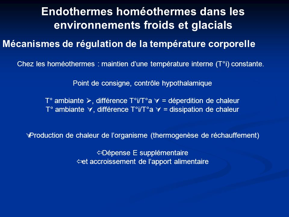Endothermes homéothermes dans les environnements froids et glacials Mécanismes de régulation de la température corporelle Point de consigne, contrôle hypothalamique T° ambiante, différence T°i/T°a = déperdition de chaleur T° ambiante, différence T°i/T°a = dissipation de chaleur Production de chaleur de lorganisme (thermogenèse de réchauffement) Dépense E supplémentaire et accroissement de lapport alimentaire Chez les homéothermes : maintien dune température interne (T°i) constante.