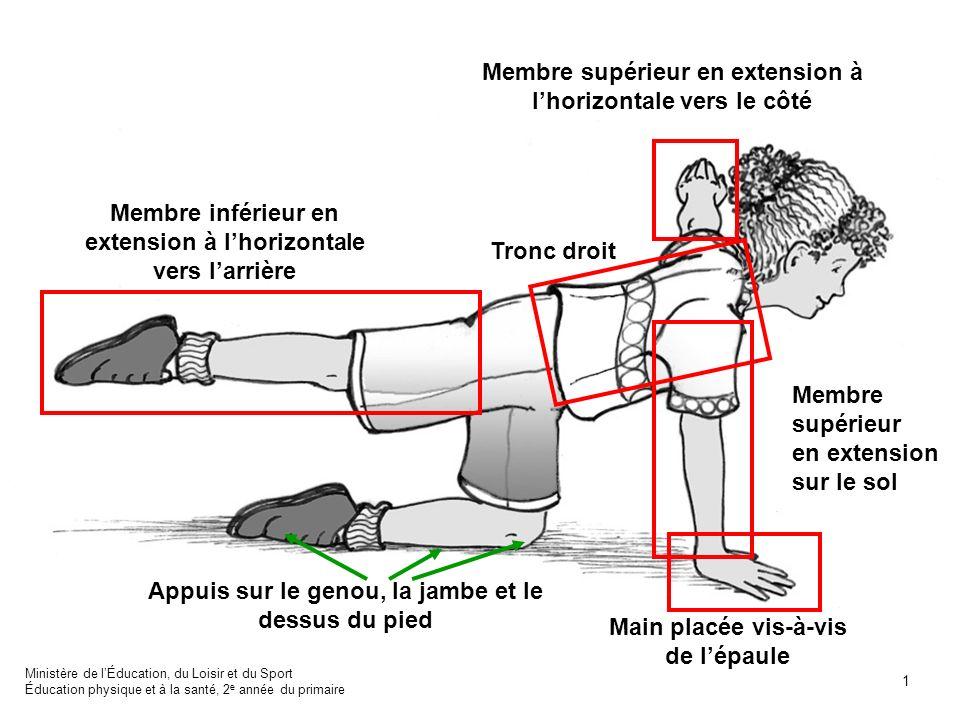 Tronc droit Membre supérieur en extension sur le sol Appuis sur le genou, la jambe et le dessus du pied Membre supérieur en extension à lhorizontale v