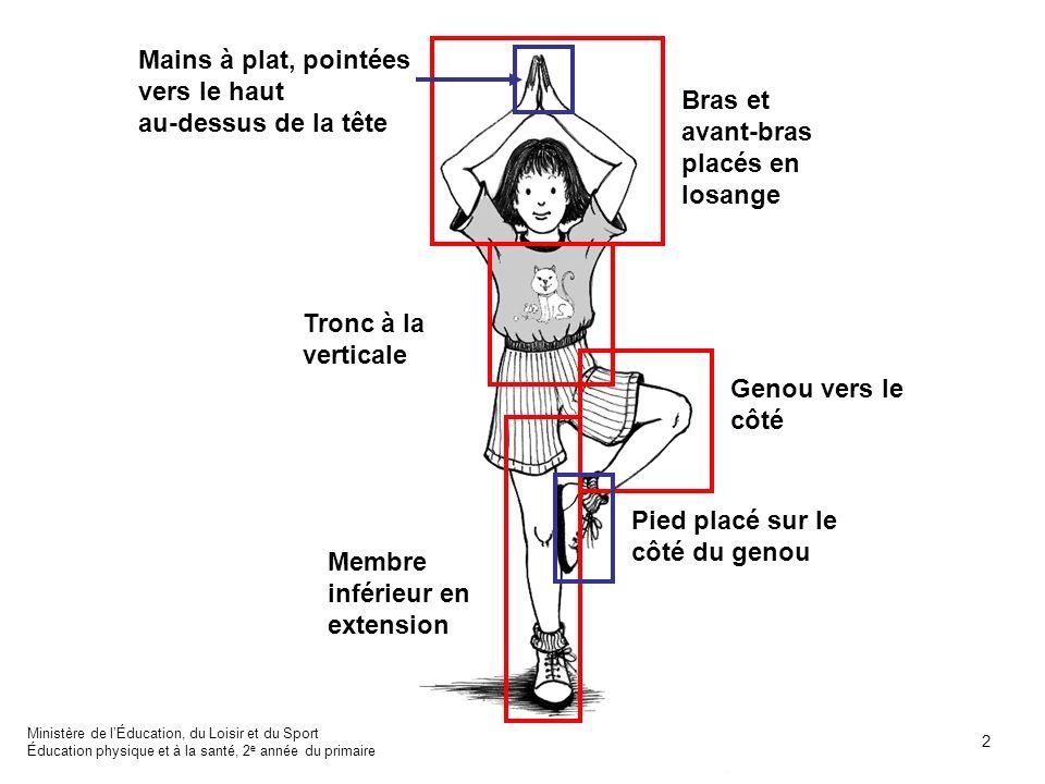 Membre inférieur en extension Pied placé sur le côté du genou Genou vers le côté Tronc à la verticale Bras et avant-bras placés en losange Mains à pla