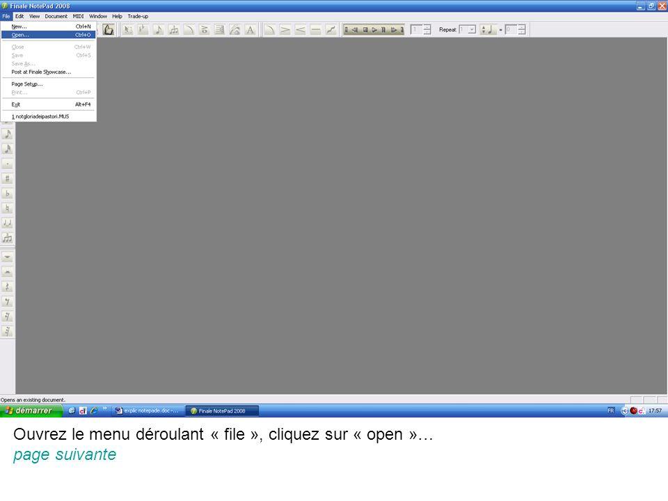 Ouvrez le menu déroulant « file », cliquez sur « open »… page suivante