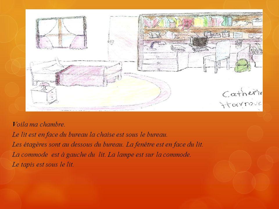 Dans ma chambre il y a deux lits…un est pour moi et un est mon frère…. Il y a une armoire à droite de la porte et en face est la fenêtre....à côté de