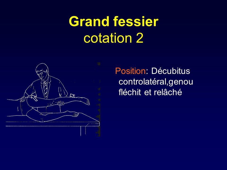 Grand fessier cotation 2 Position: Décubitus controlatéral,genou fléchit et relâché