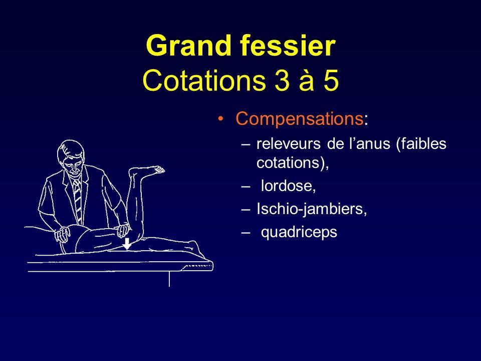 Grand fessier Cotations 3 à 5 Compensations: –releveurs de lanus (faibles cotations), – lordose, –Ischio-jambiers, – quadriceps
