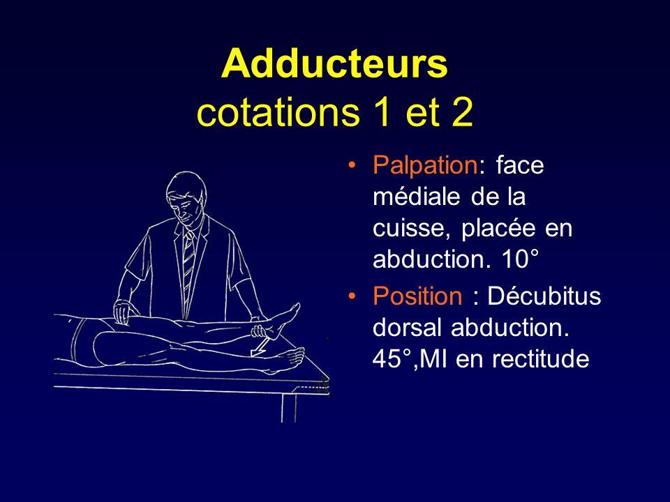 Adducteurs cotations 1 et 2 Palpation: face médiale de la cuisse, placée en abduction. 10° Position : Décubitus dorsal abduction. 45°,MI en rectitude