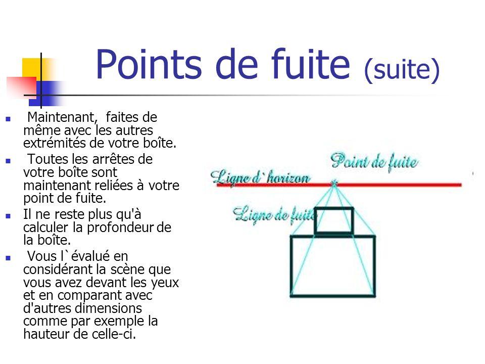 Points de fuite (suite) Maintenant, faites de même avec les autres extrémités de votre boîte. Toutes les arrêtes de votre boîte sont maintenant reliée