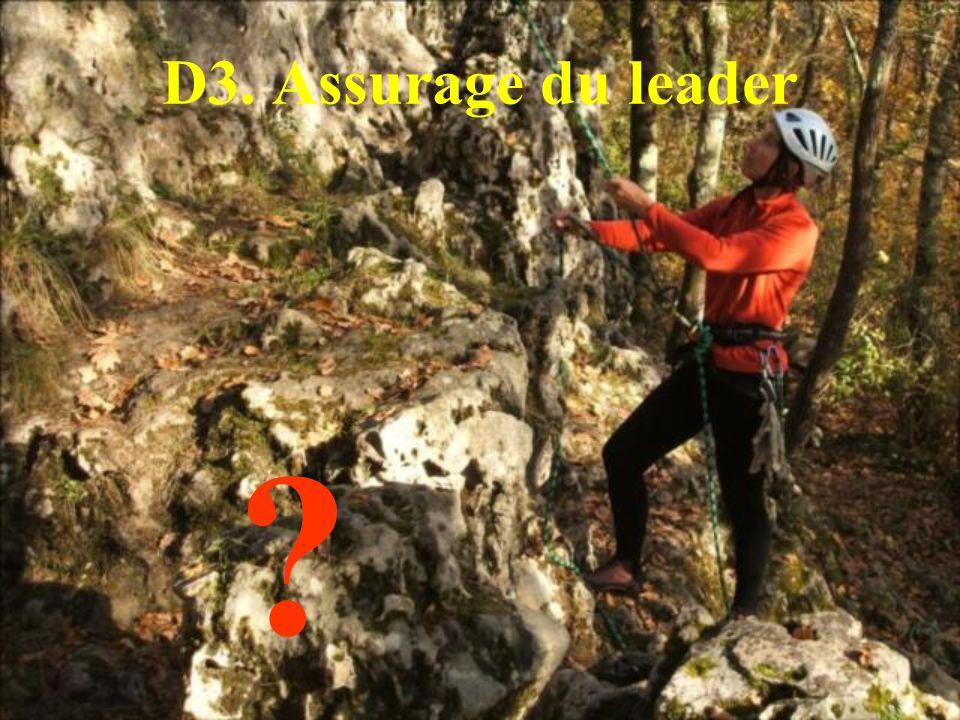 D3. Assurage du leader ?