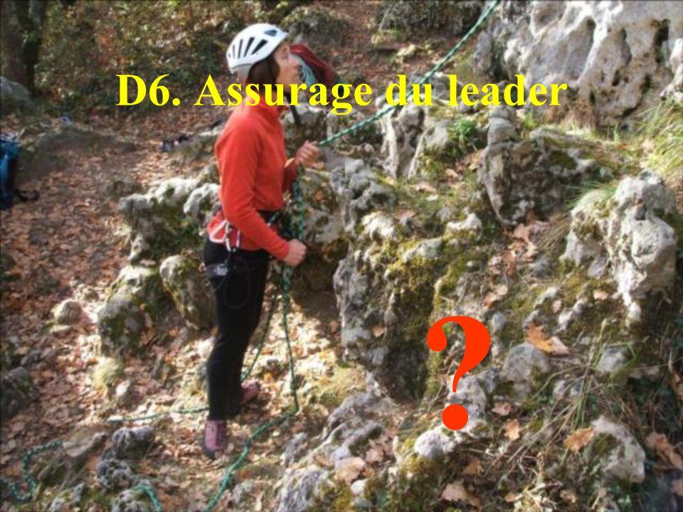 D6. Assurage du leader ?