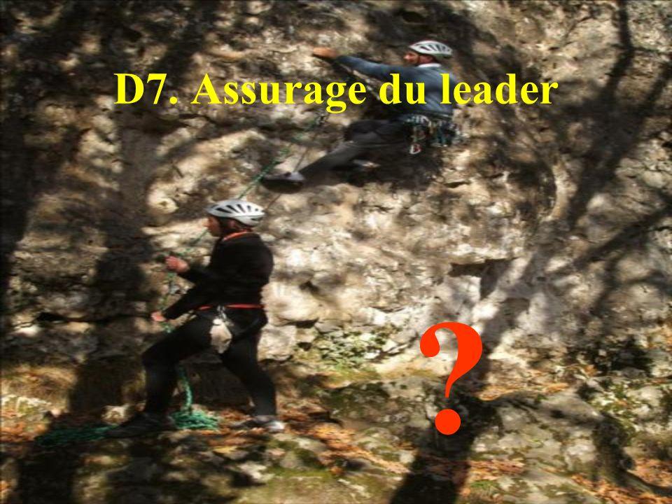D7. Assurage du leader ?