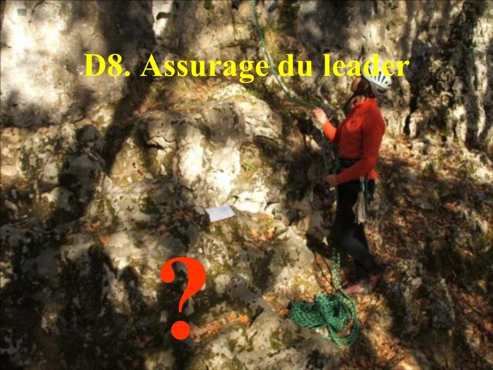 D8. Assurage du leader ?