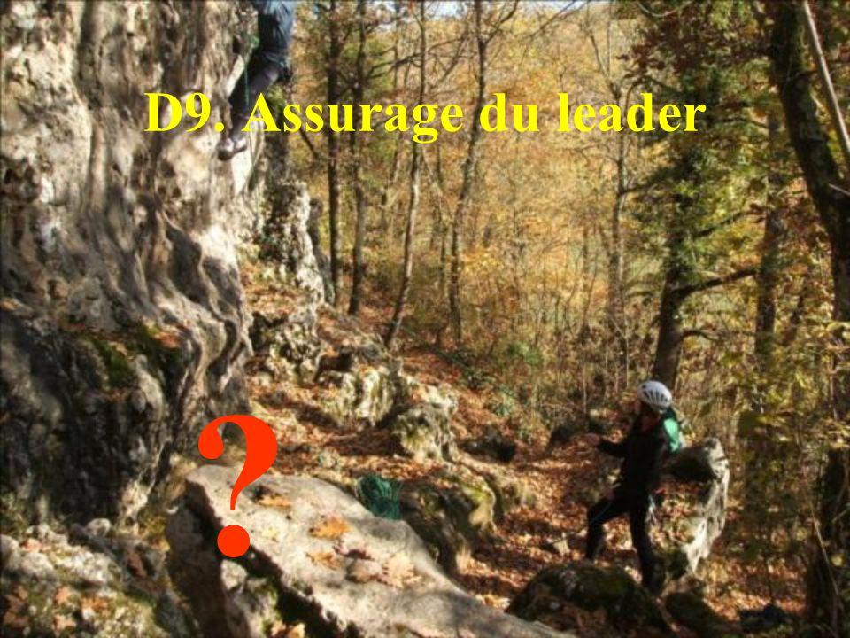 D9. Assurage du leader ?