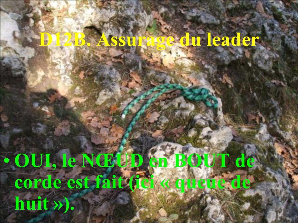 D12B. Assurage du leader OUI, le NŒUD en BOUT de corde est fait (ici « queue de huit »).