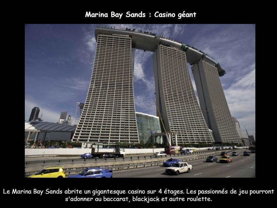Le Marina Bay Sands possèdera 2500 chambres et suites. Il existera 18 types de chambres différentes dont les suites Chairman et Présidentielle. Chaque