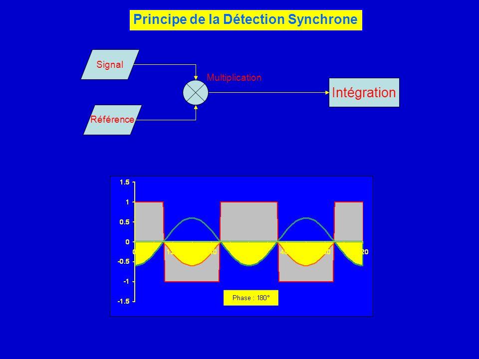 Principe de la Détection Synchrone Référence Signal Intégration Multiplication