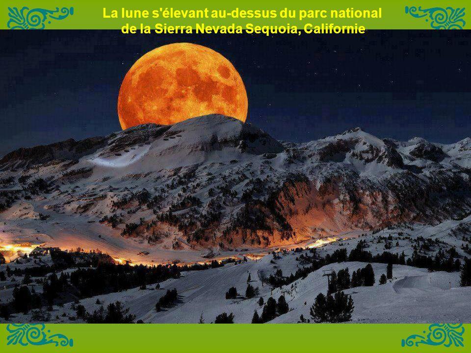 La lune s élevant au-dessus du parc national de la Sierra Nevada Sequoia, Californie