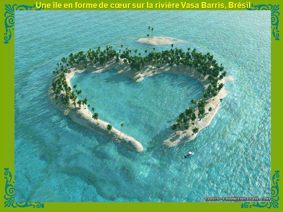 L'eau est si claire on dirait que le bateau est en vol stationnaire! - Bora Pearl Beach
