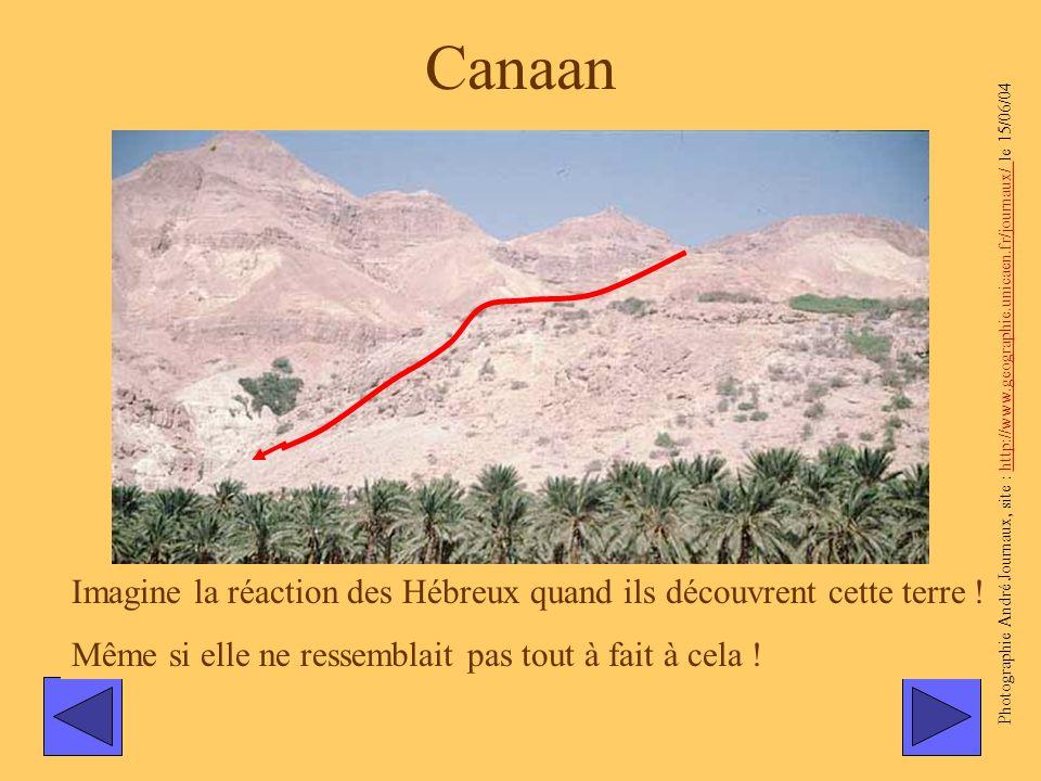 Canaan Imagine la réaction des Hébreux quand ils découvrent cette terre ! Même si elle ne ressemblait pas tout à fait à cela ! Photographie André Jour