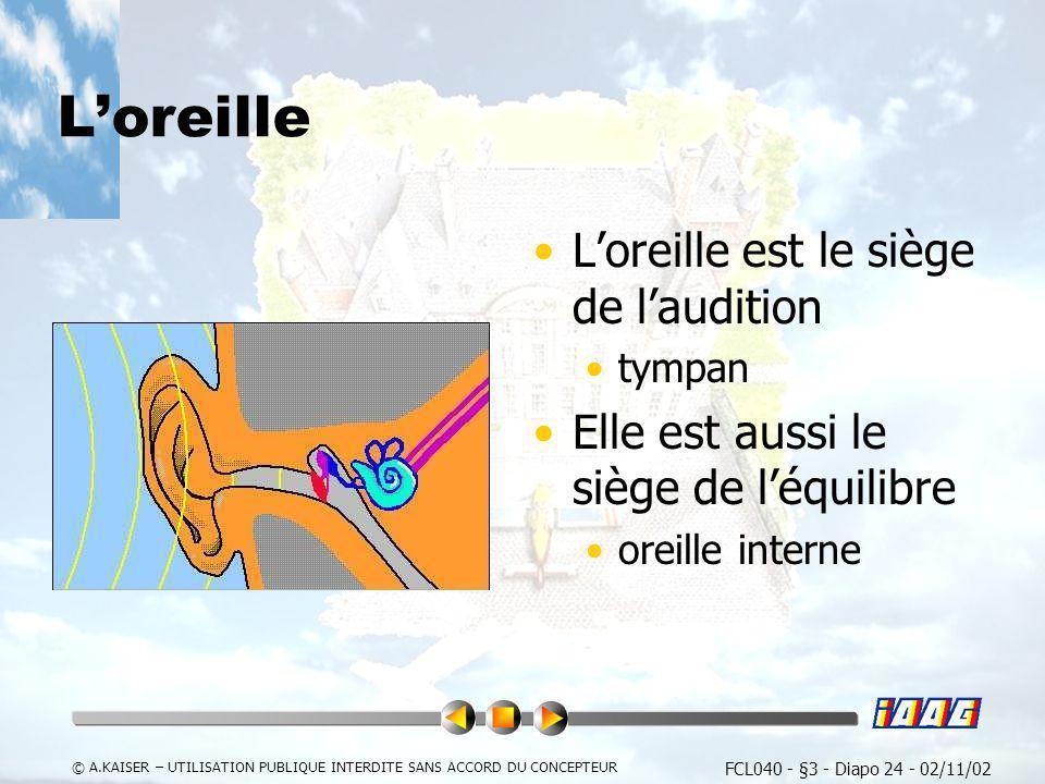 FCL040 - §3 - Diapo 24 - 02/11/02 © A.KAISER – UTILISATION PUBLIQUE INTERDITE SANS ACCORD DU CONCEPTEUR Loreille Loreille est le siège de laudition ty