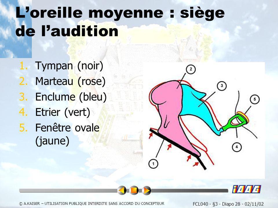 FCL040 - §3 - Diapo 28 - 02/11/02 © A.KAISER – UTILISATION PUBLIQUE INTERDITE SANS ACCORD DU CONCEPTEUR Loreille moyenne : siège de laudition 1.Tympan