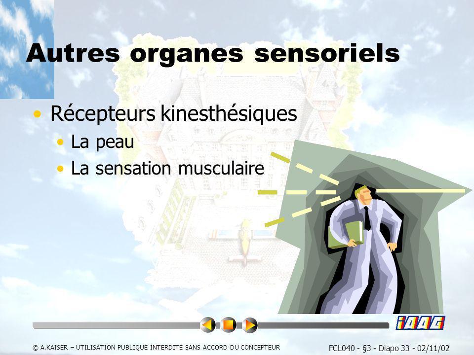 FCL040 - §3 - Diapo 33 - 02/11/02 © A.KAISER – UTILISATION PUBLIQUE INTERDITE SANS ACCORD DU CONCEPTEUR Autres organes sensoriels Récepteurs kinesthés