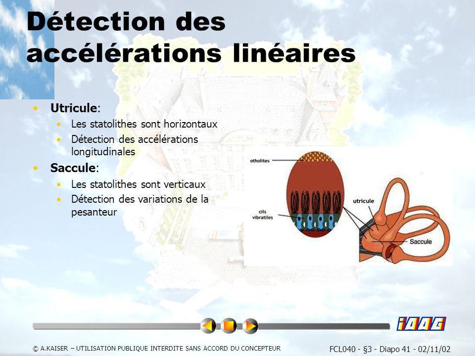 FCL040 - §3 - Diapo 41 - 02/11/02 © A.KAISER – UTILISATION PUBLIQUE INTERDITE SANS ACCORD DU CONCEPTEUR Détection des accélérations linéaires Utricule