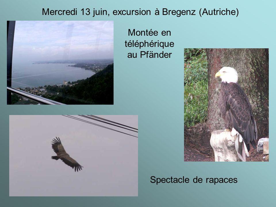 Mercredi 13 juin, excursion à Bregenz (Autriche) Montée en téléphérique au Pfänder Spectacle de rapaces